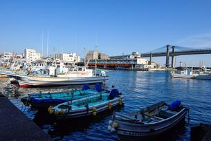 小田原漁港と停泊する漁船の写真素材 [FYI03055858]