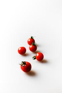 ミニトマトの写真素材 [FYI03055898]