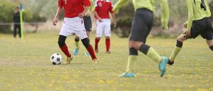 サッカー フットボールの写真素材 [FYI03055932]