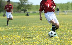 サッカー フットボールの写真素材 [FYI03055954]