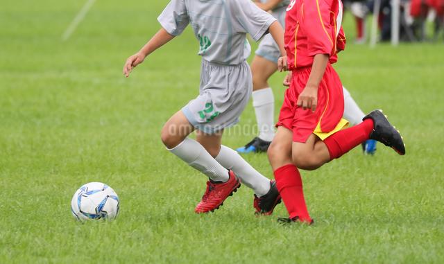 サッカー フットボールの写真素材 [FYI03056013]