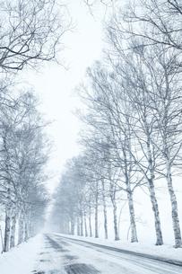 北海道の冬の路面の写真素材 [FYI03056024]