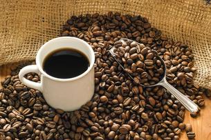 コーヒー豆の写真素材 [FYI03056045]