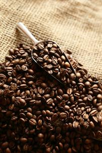 コーヒー豆の写真素材 [FYI03056085]
