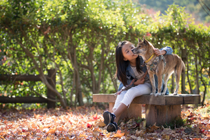 犬と子供の写真素材 [FYI03056224]
