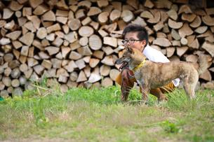 男の子と柴犬の写真素材 [FYI03056277]