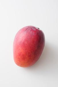 アップルマンゴーの写真素材 [FYI03056300]