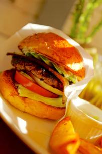 ハンバーガーの写真素材 [FYI03056338]