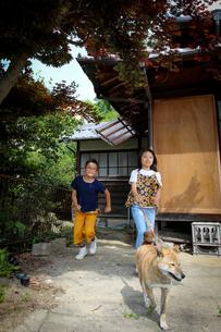 柴犬と散歩の写真素材 [FYI03056473]