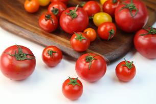 トマトの写真素材 [FYI03056491]