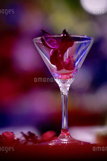 魅惑のグラスの写真素材 [FYI03056602]