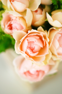 バラのアレンジメントの写真素材 [FYI03056637]