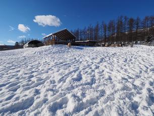 冬の牧場の写真素材 [FYI03056855]