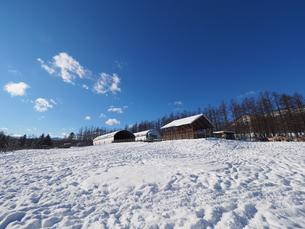 冬の牧場の写真素材 [FYI03056864]