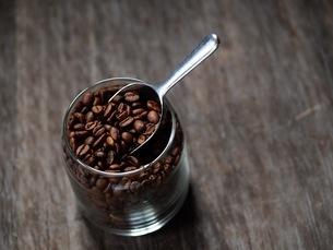 コーヒー豆の写真素材 [FYI03056870]