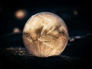 冬のシャボン玉の写真素材 [FYI03056898]
