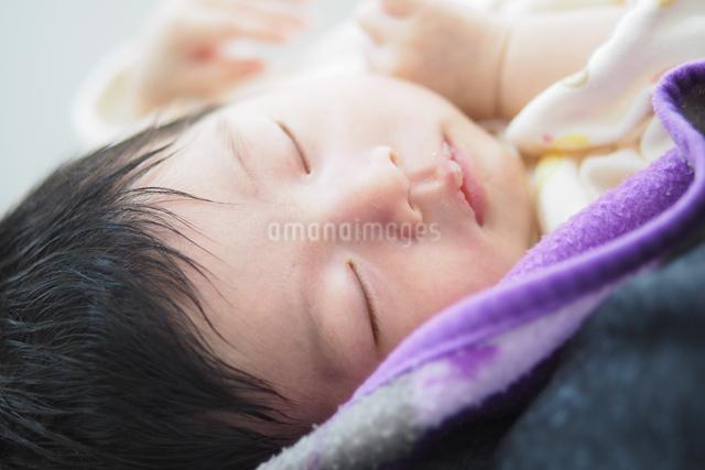 新生児の写真素材 [FYI03056903]
