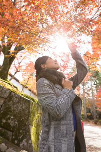 秋の京都を旅する女性の写真素材 [FYI03056951]