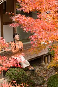 秋の京都を旅する女性の写真素材 [FYI03057009]