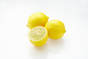 レモンの写真素材 [FYI03057042]