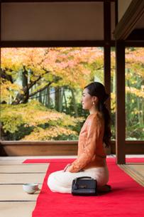 秋の京都を旅する女性の写真素材 [FYI03057161]