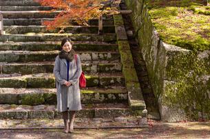 秋の京都を旅する女性の写真素材 [FYI03057189]