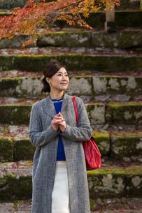 秋の京都を旅する女性の写真素材 [FYI03057190]