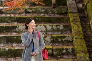 秋の京都を旅する女性の写真素材 [FYI03057192]