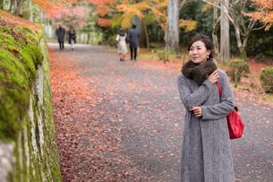 秋の京都を旅する女性の写真素材 [FYI03057194]