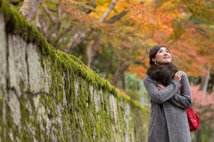 秋の京都を旅する女性の写真素材 [FYI03057196]