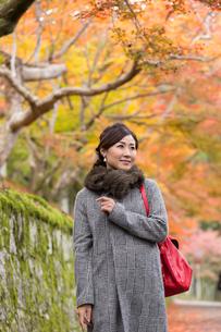 秋の京都を旅する女性の写真素材 [FYI03057197]