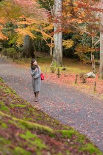 秋の京都を旅する女性の写真素材 [FYI03057198]