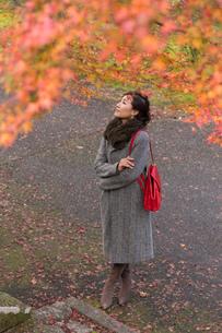 秋の京都を旅する女性の写真素材 [FYI03057199]