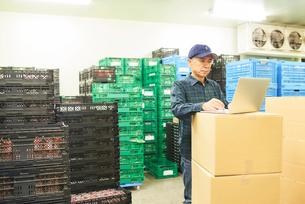 倉庫で商品を整理するシニアの男性の写真素材 [FYI03058050]