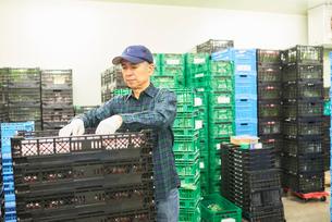 倉庫で商品を整理するシニアの男性の写真素材 [FYI03058052]
