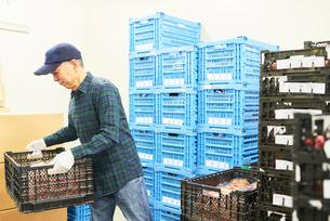倉庫で商品を整理するシニアの男性の写真素材 [FYI03058055]