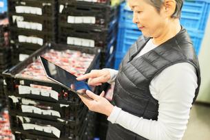 倉庫で商品を整理するシニアの女性の写真素材 [FYI03058056]