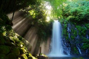 白糸の滝の写真素材 [FYI03058259]