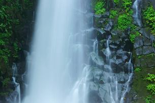 白糸の滝の写真素材 [FYI03058262]