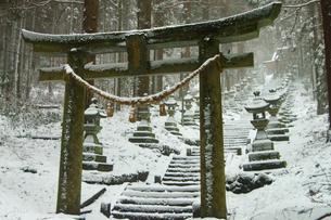 上色見熊野座神社の写真素材 [FYI03058270]