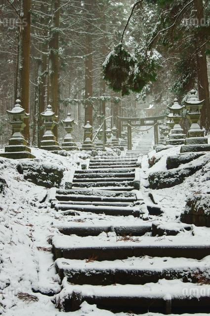 上色見熊野座神社の写真素材 [FYI03058272]
