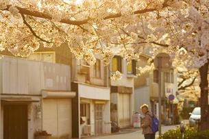 春の町並みの写真素材 [FYI03058366]