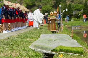 美山茅葺の里お田植祭の写真素材 [FYI03058646]