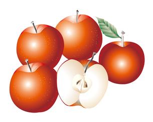 リンゴのイラスト素材 [FYI03058715]