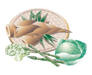 野菜類のイラスト素材 [FYI03058746]