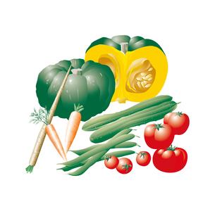 野菜類のイラスト素材 [FYI03058747]