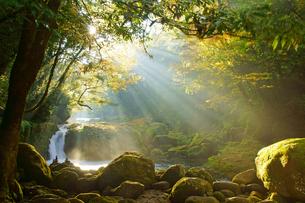 黎明の滝の写真素材 [FYI03058920]
