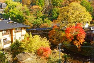 秋の黒川温泉の写真素材 [FYI03058921]
