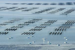有明海の海苔網の写真素材 [FYI03059144]