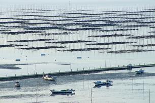 有明海の海苔網の写真素材 [FYI03059145]